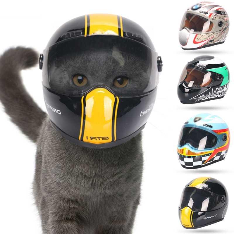 Pet Helmet
